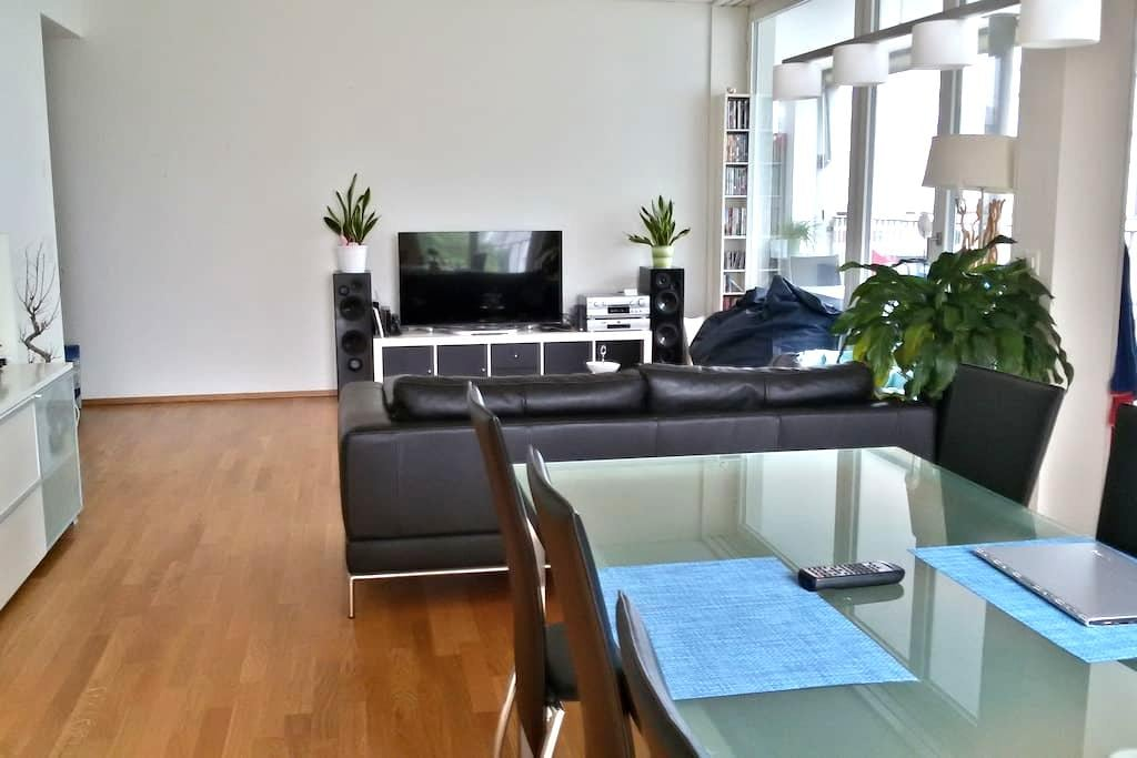Room near trainstaition/center - Winterthur - Daire
