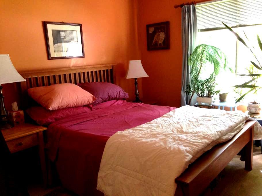 Charming room in quiet neighborhood - Hartford - Hus