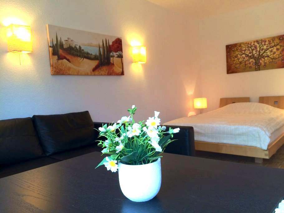wiesbaden-wohnen-aufzeit 2 - Wiesbaden - Apartemen