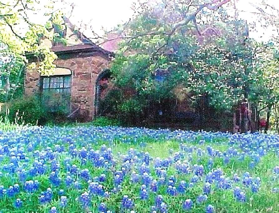 Bluebonnet Haven - Weatherford - House