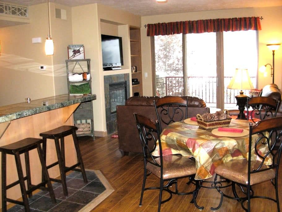Frenchmans Condo in Ketchum - Ketchum - Flat