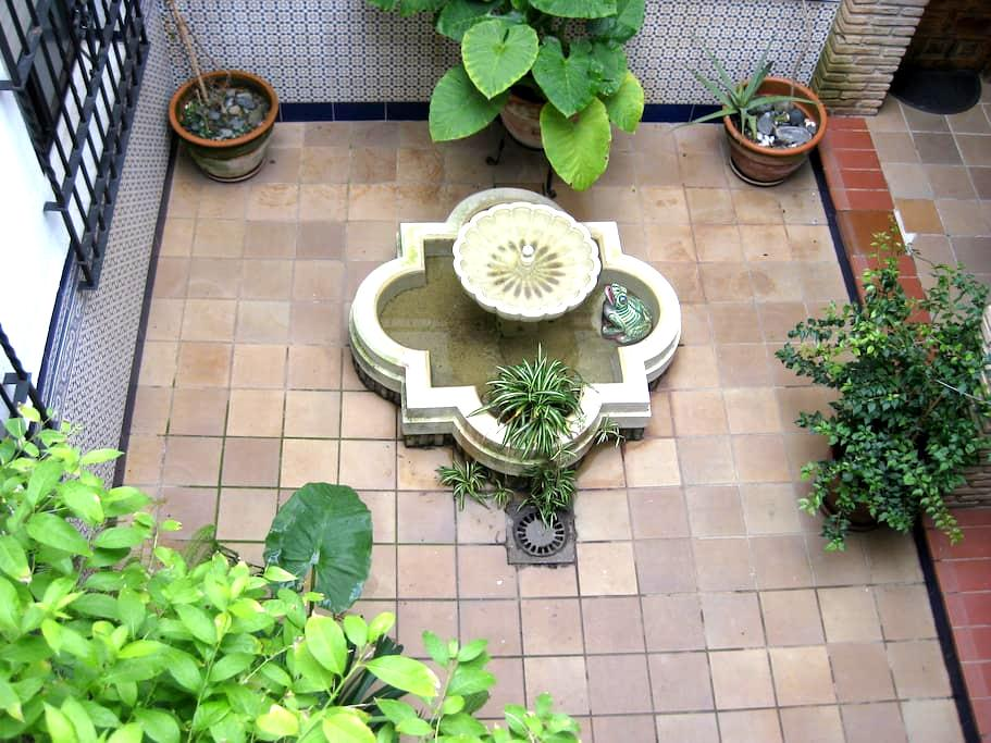 apto. casa-patio, centro histórico. 1, 2,3 ó 4 px. - Córdoba - Flat