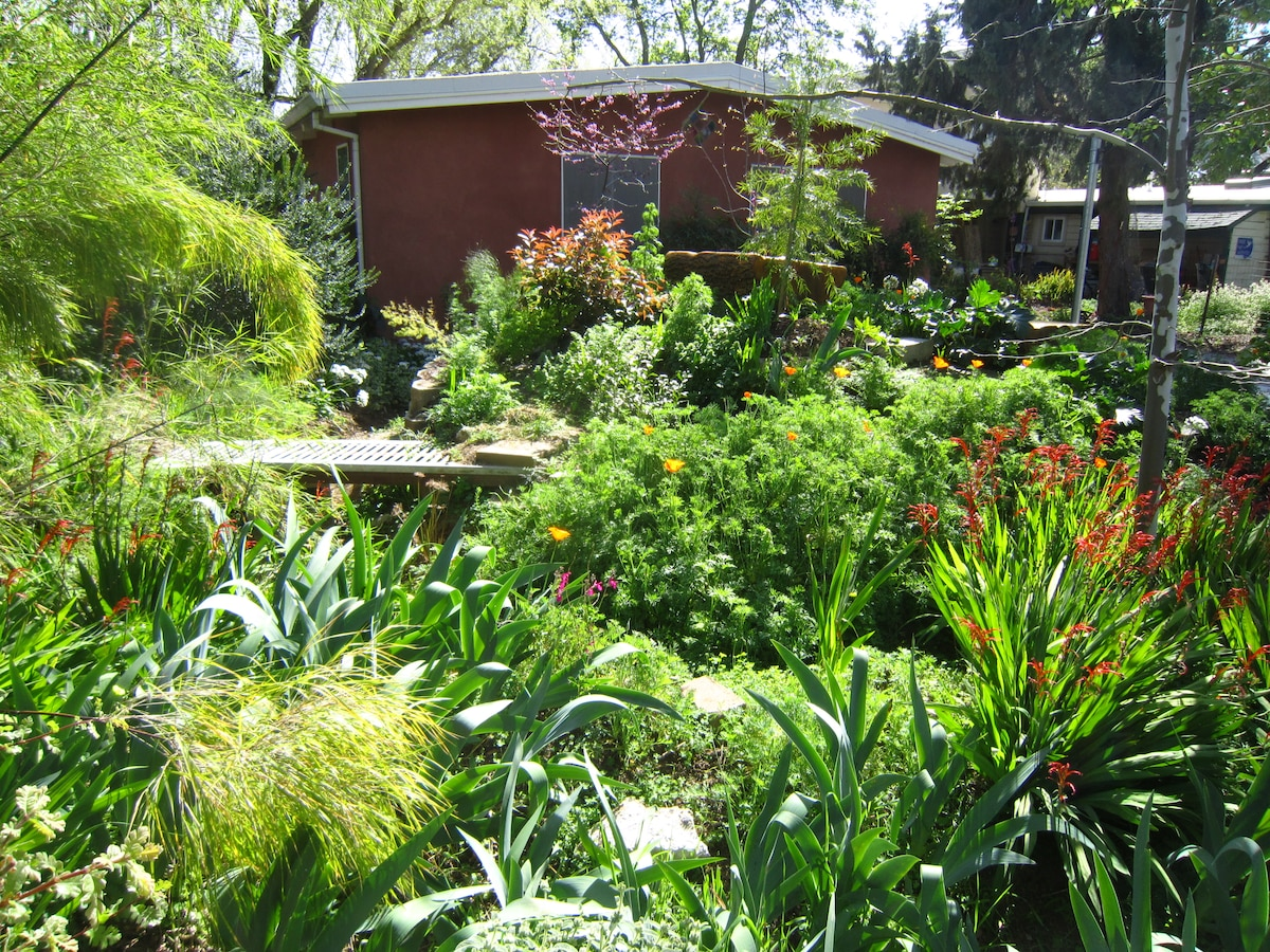 Two rooms in cohousing community