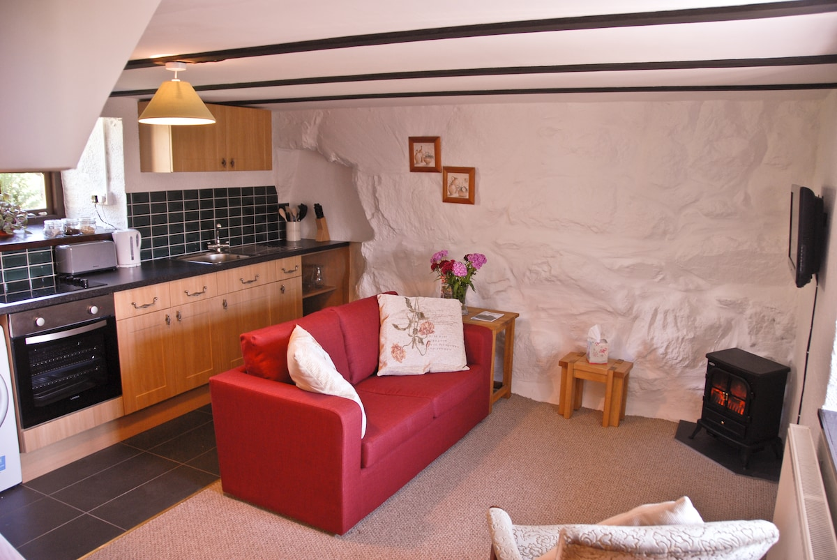 The Barn & Hayloft in Snowdonia - Chalets for Rent in Pentrefelin ...