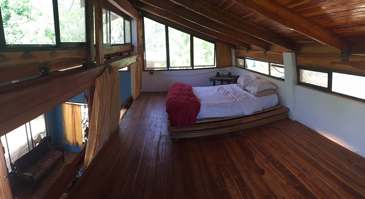 monkeys might visit you in the loft by the tree canopy
