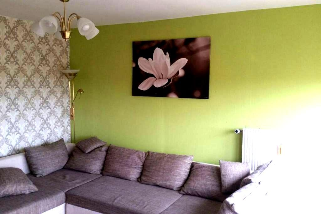 Nice App. Living room, kitchen, bedroom, bathroom - Mulhouse - Appartement