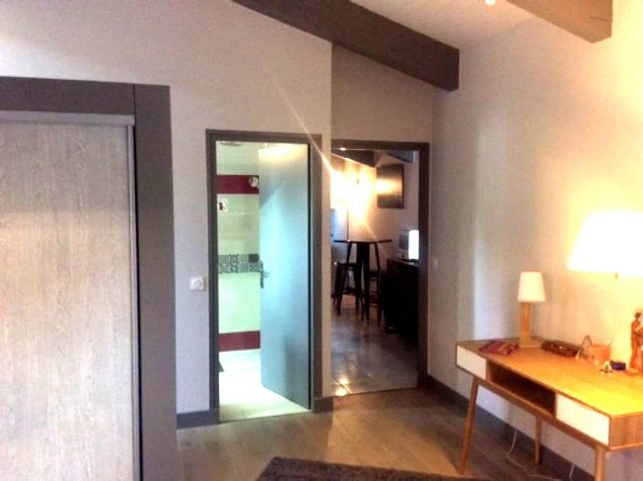 Sejour+ coin cuisine, et une chambre Lit 160 - Pexiora - Appartement
