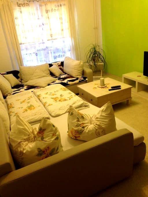 Stadtmitte günstig & gut schlafen! - Cottbus - Apartment