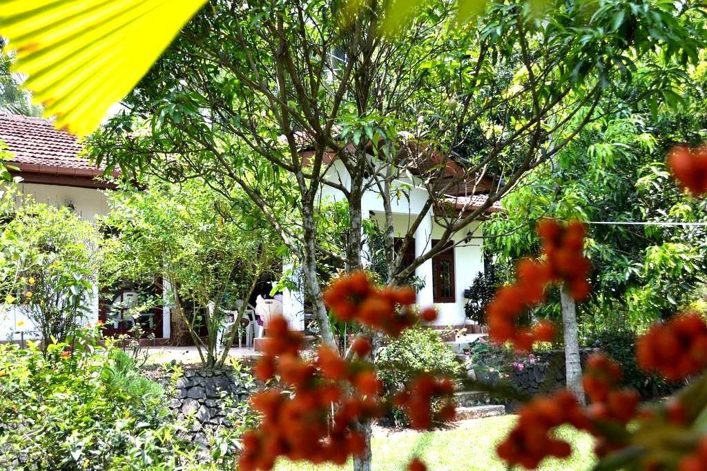 Diyagal Villa Pinnawala - Room 3 - Rambukkana - Casa