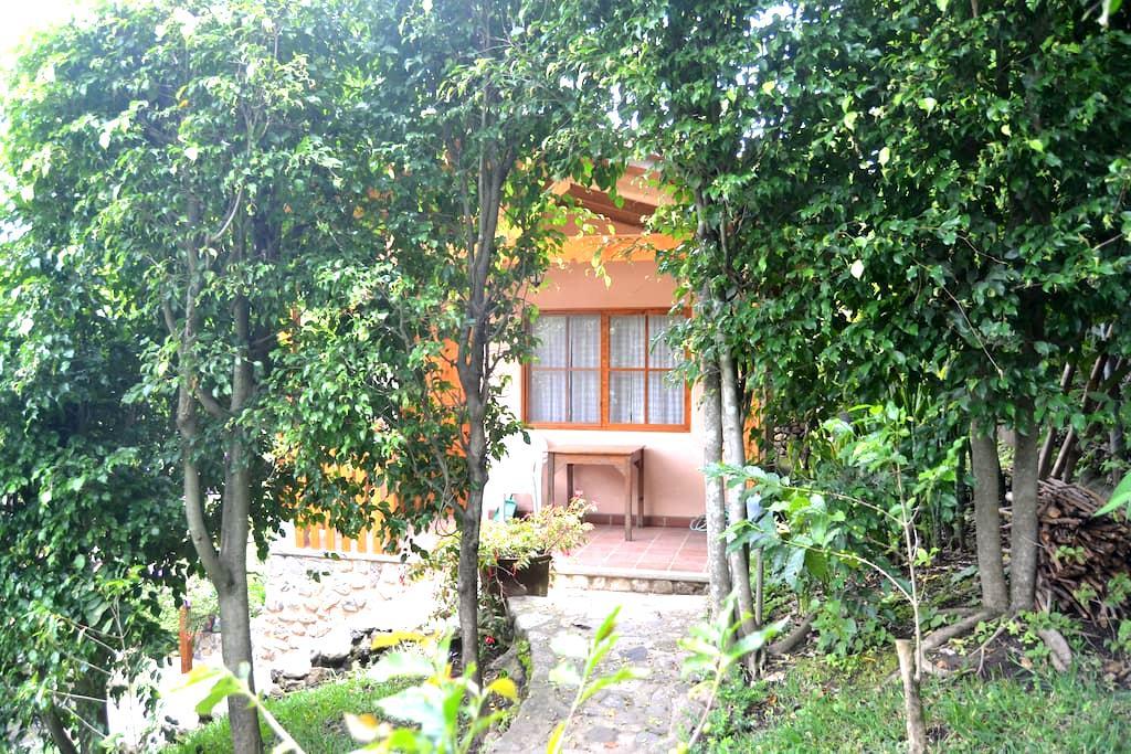 Apt. Studio Bungalow in Garden - B3 - Panajachel