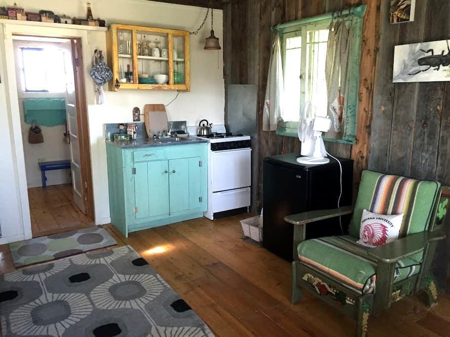 The Cabin on the Hot Springs Road - Ranchos de Taos - Srub
