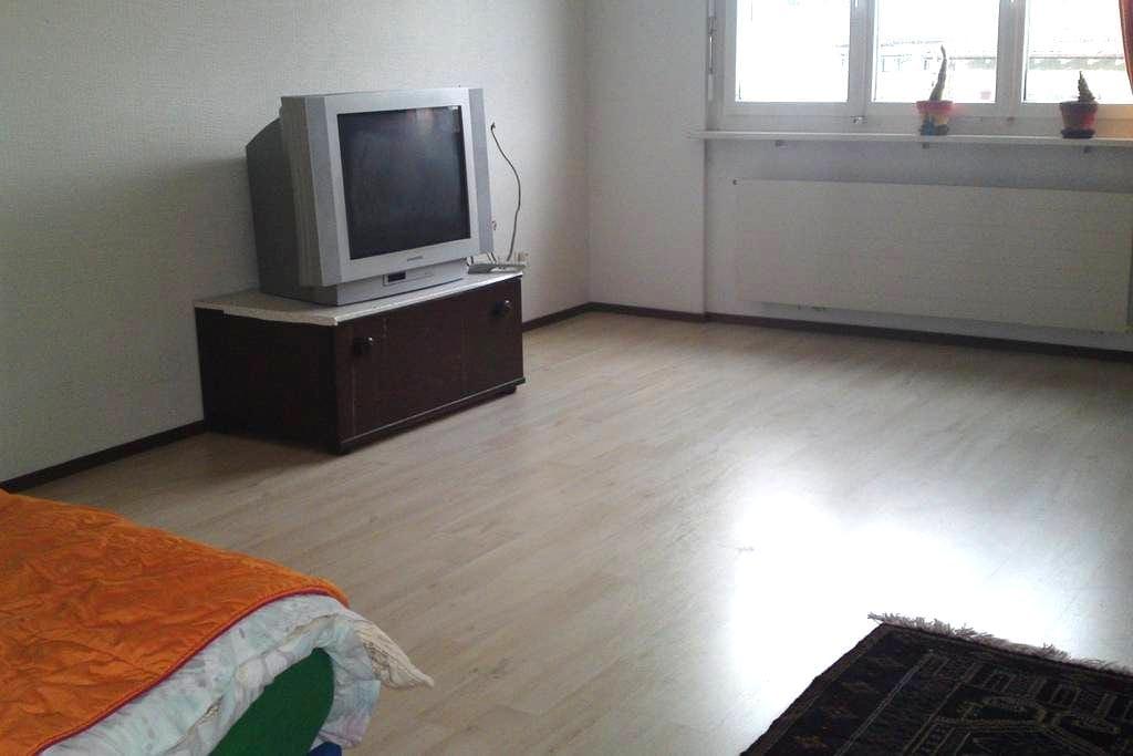 Grosszügiges Zimmer alles inklusive - Adliswil - Apartment