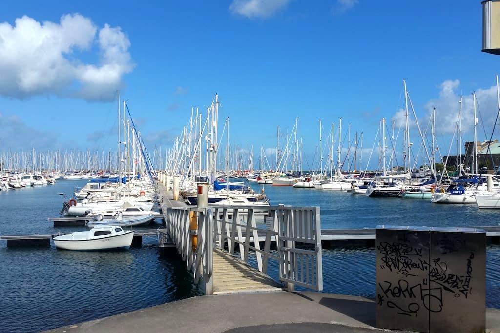 Le Sterne - Cherbourg-Octeville - Båt