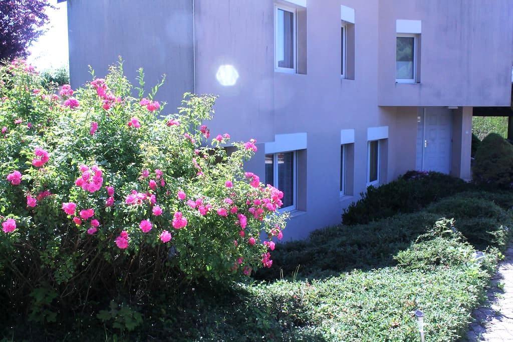 AGREABLE T2 AU CALME - Cranves-Sales - Apartment