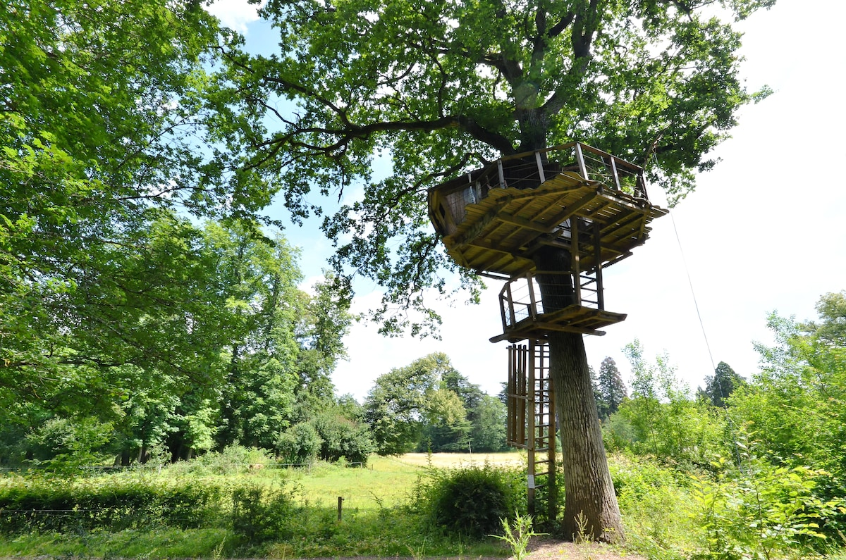 Tree house Gabrielle d'Estrees
