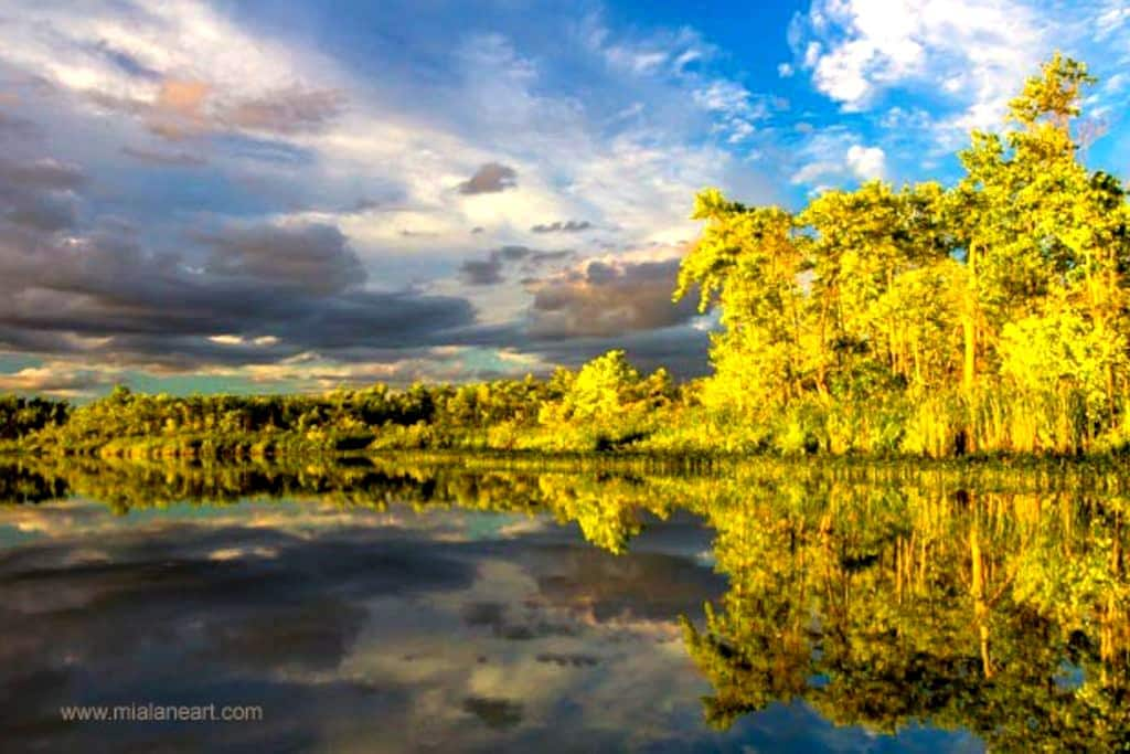 Quiet Retreat on Fish Lake - Demorestville, Prince Edward County