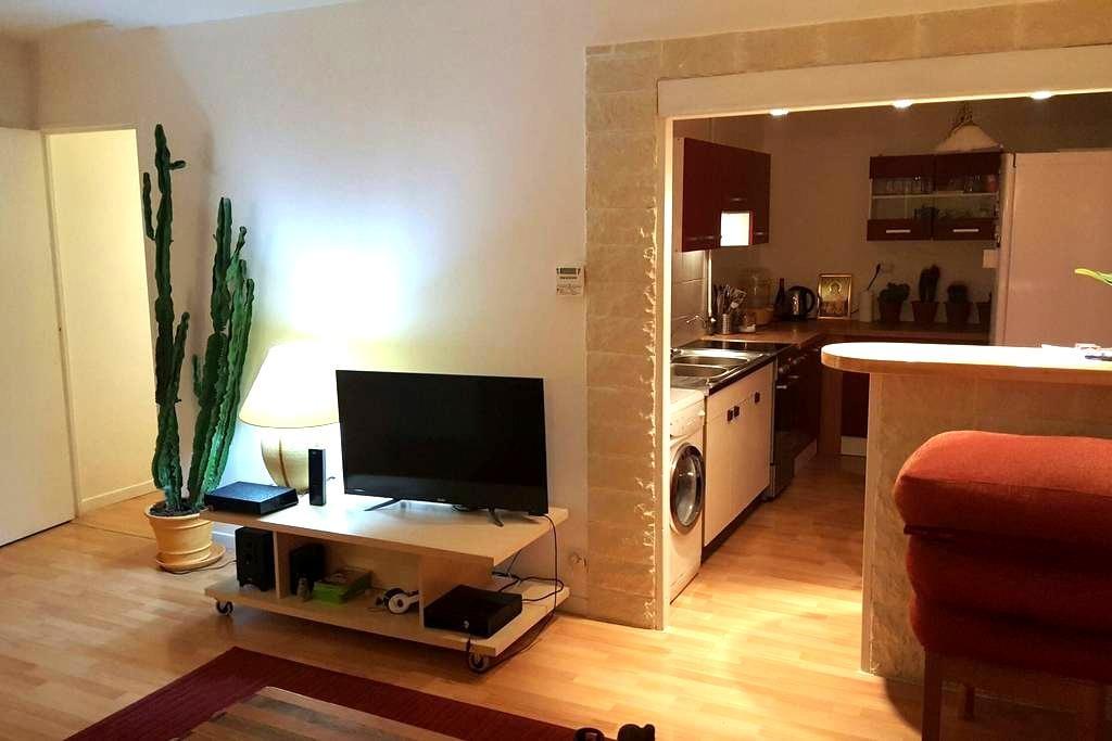 One bedroom flat with parking - Poisat - Apartemen