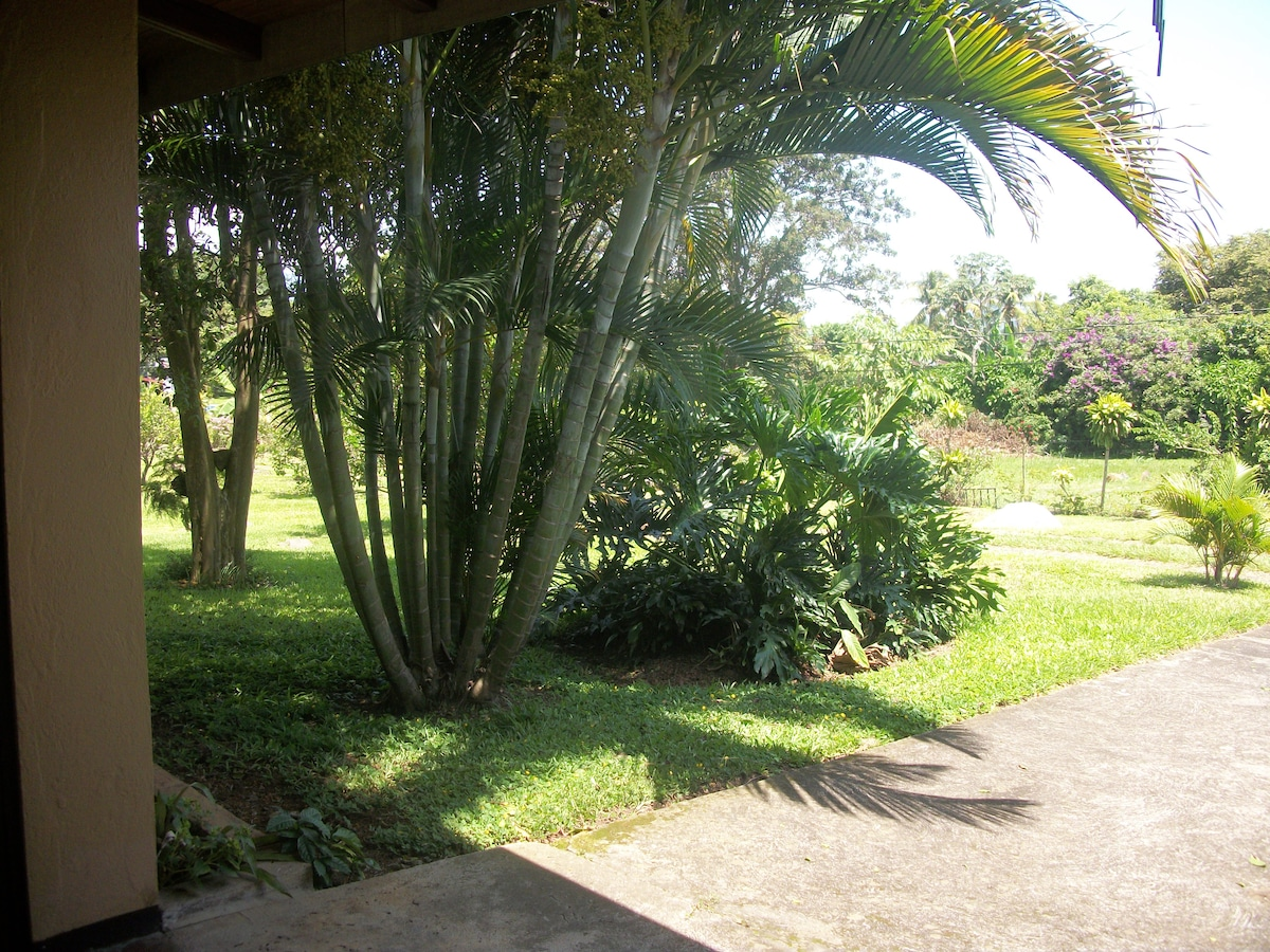 Front Garden view of unit 3