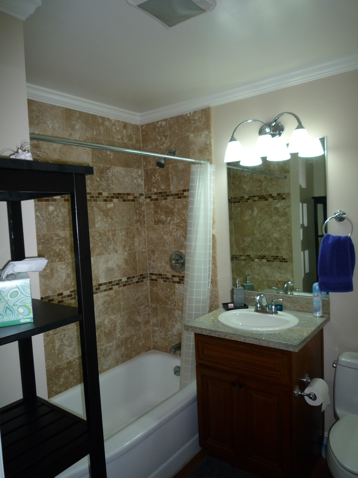 Guest bathroom, with bath tub and overhead shower head.