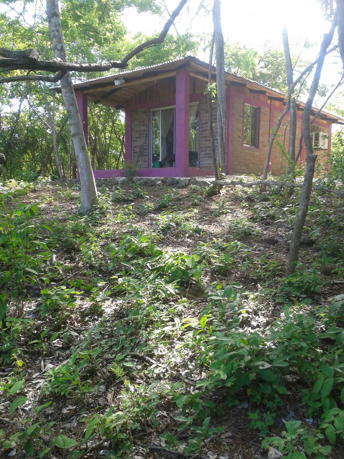 Brick cottage in the coastal hills