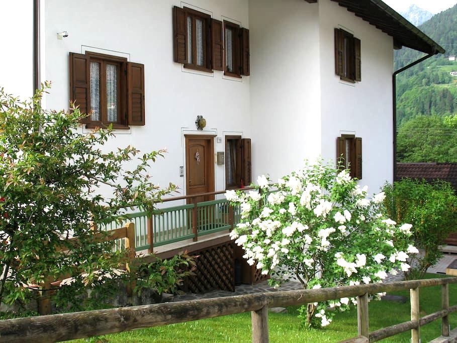 Ospitalità relax natura e sport. - Canal San Bovo