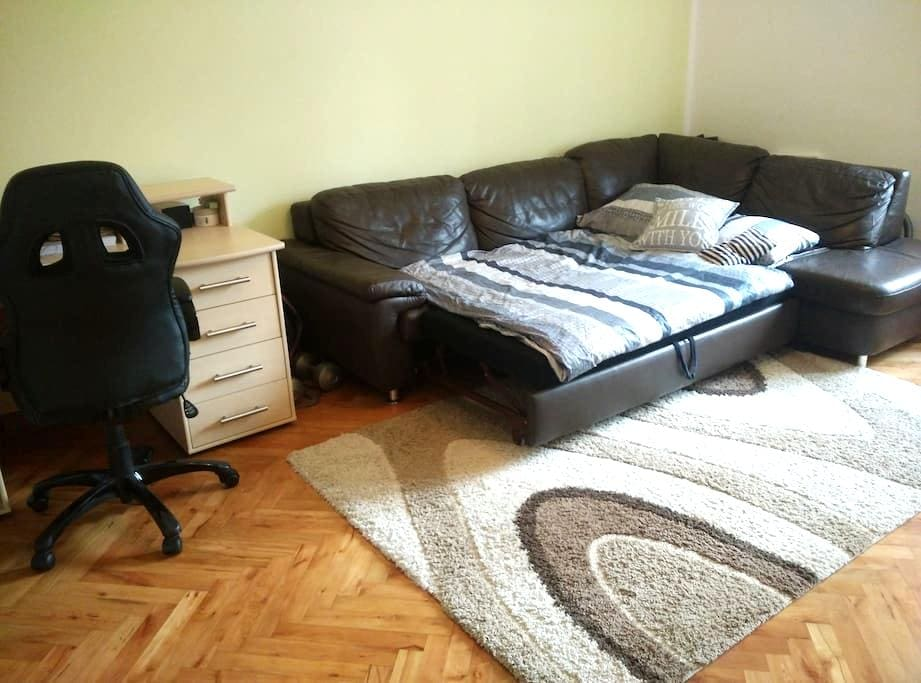 Cozy room in a Picturesque Town - Villach - Apartment
