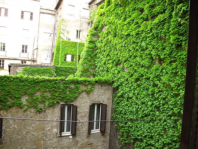 A 2 bedrooms flat at Campo de Fiori