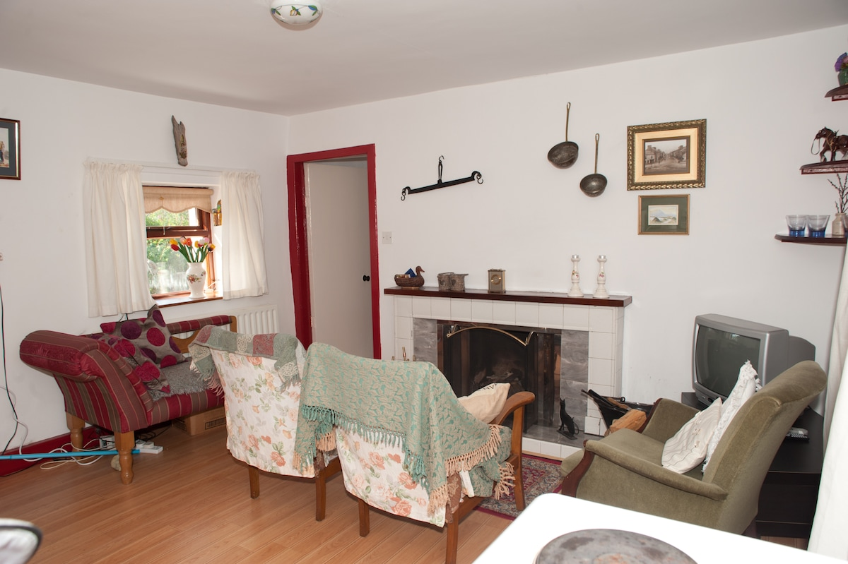typical Irish living room with fireplace