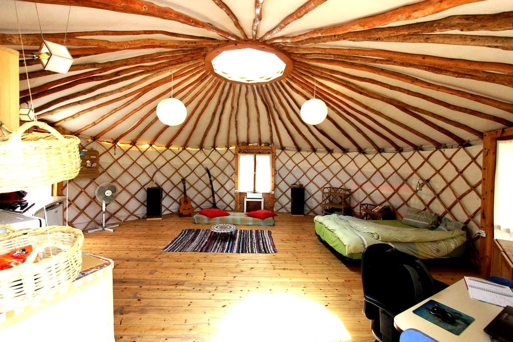 Yurt - a unique home in nature - Nataf