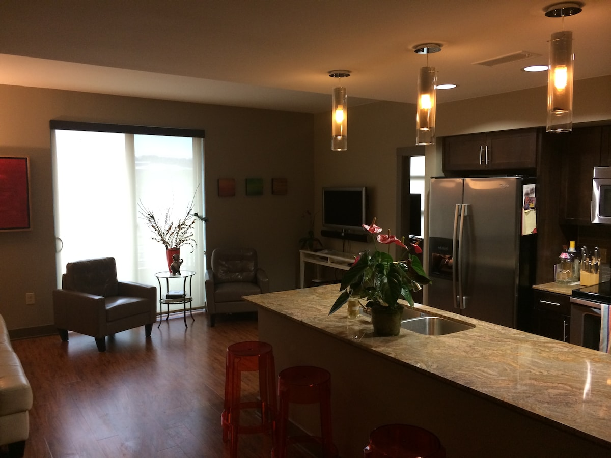Stylish Riverside Condo, walk DT