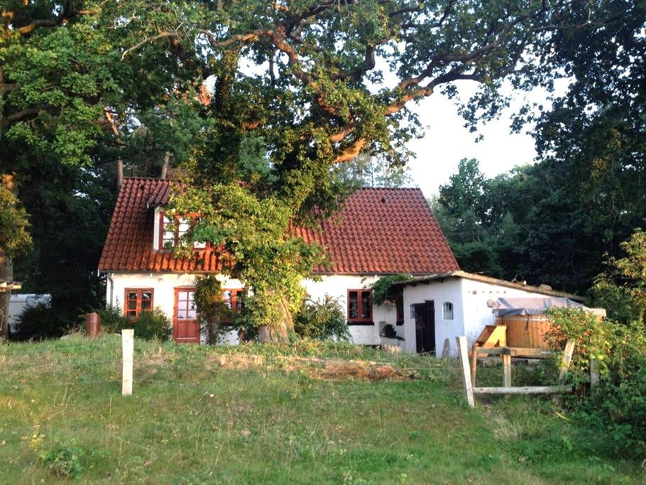 Secluded waterside cottage - Eskebjerg