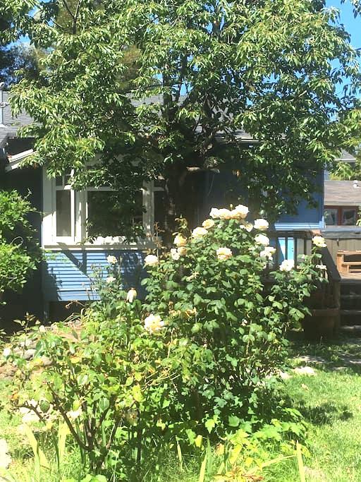 Casa Bleu: A Charming 1920's Cottage - Sonoma - Huis