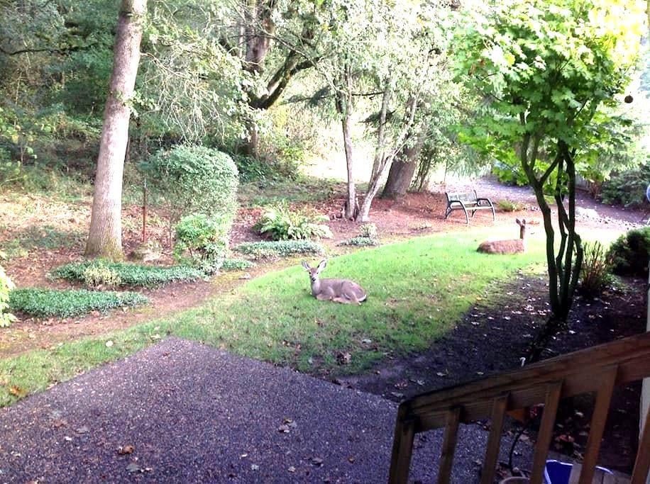 Peaceful, park-like setting home - Oregon City - Hus