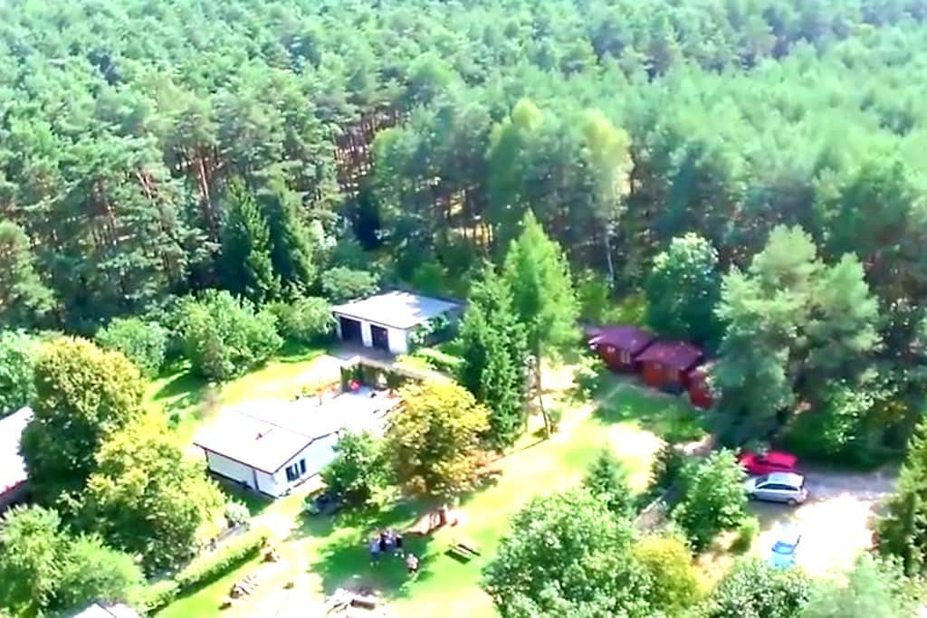 Polish-Dutch guesthouse in forest - Nowy Tomysl