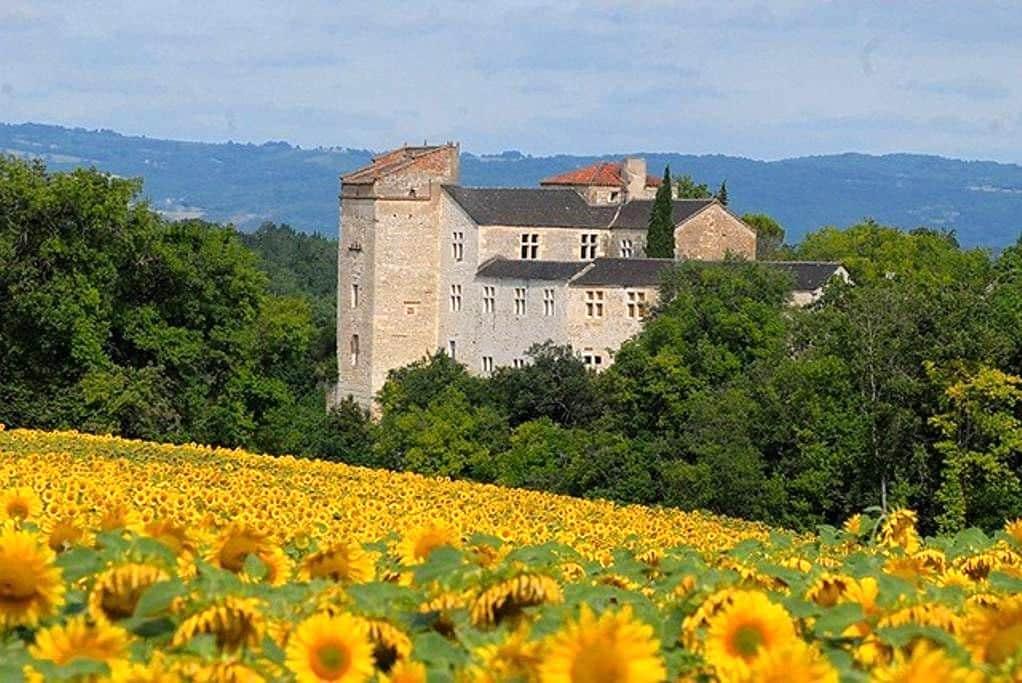 Château de charme avec piscine - Livers-Cazelles - Schloss