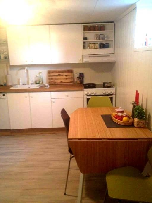 Appartement in the middle of Notodden. - Notodden - Lakás
