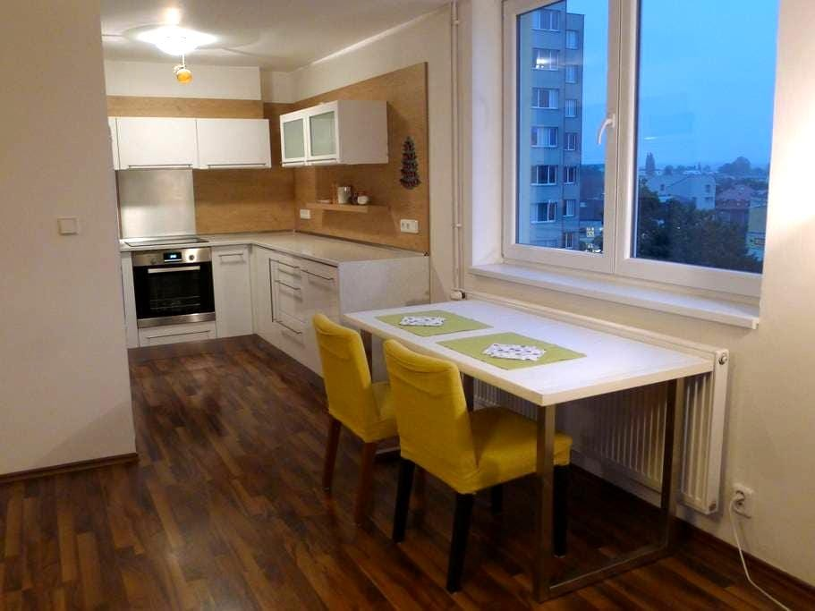 Liberec Eye - Charming Apt in the City center - Liberec - Apartamento