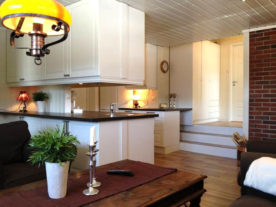 Appartement i Ski/Hiking Resort - Hol