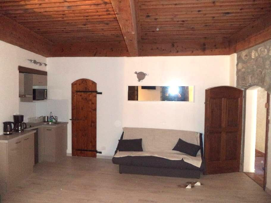 Agréable studio 35m2 tout confort - Saint-Bonnet-en-Champsaur - Lägenhet