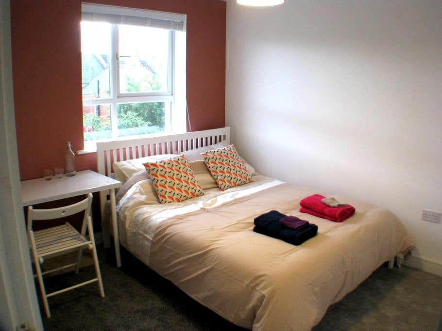 Modern room with private bathroom and kingsize bed - Exeter - Dom