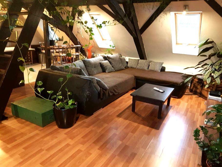 Appartement 2 Pièces Atypique - Mulhouse - Apartamento
