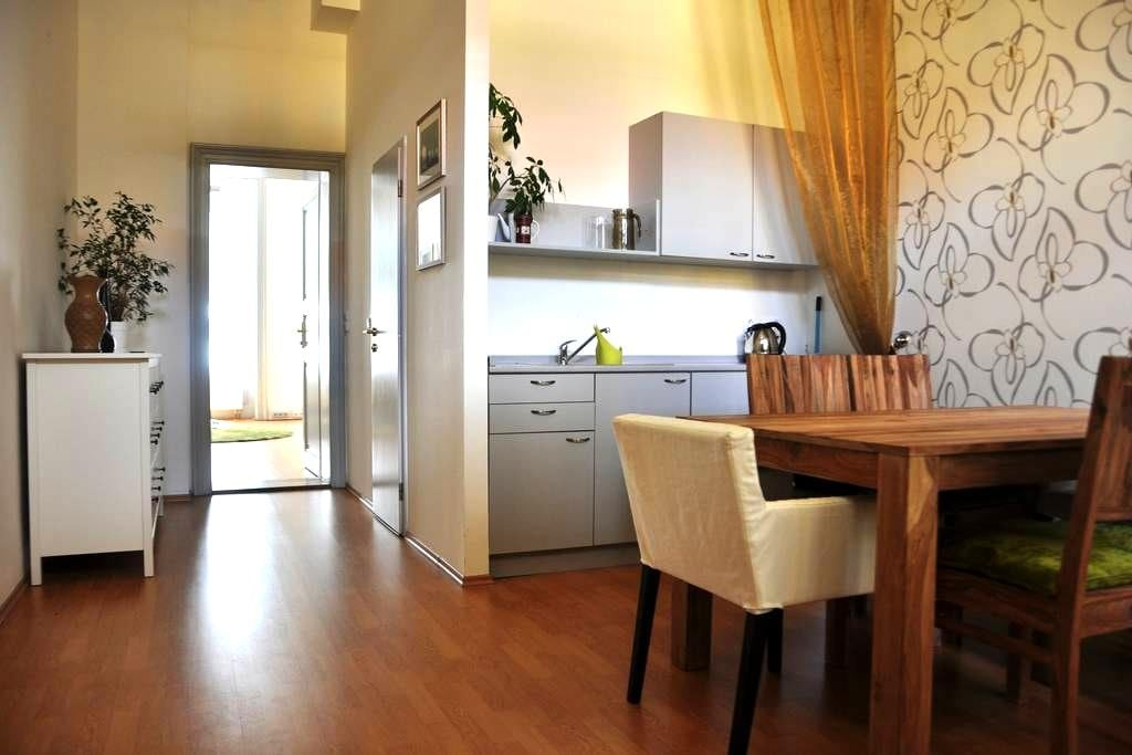 Cosy apartment near the centre of Prague(+parking) - Praag - Appartement