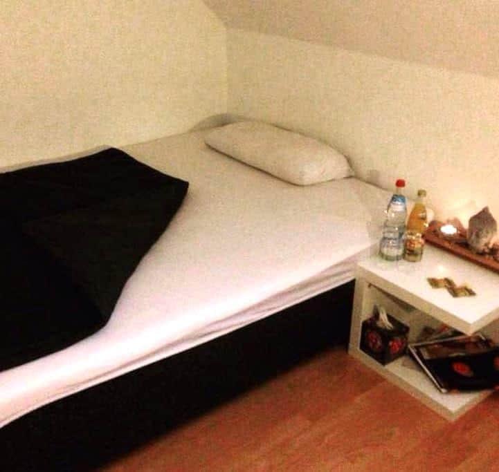 Zimmer in einer zentralen Dachgeschosswohnung - Landshut - Apartamento