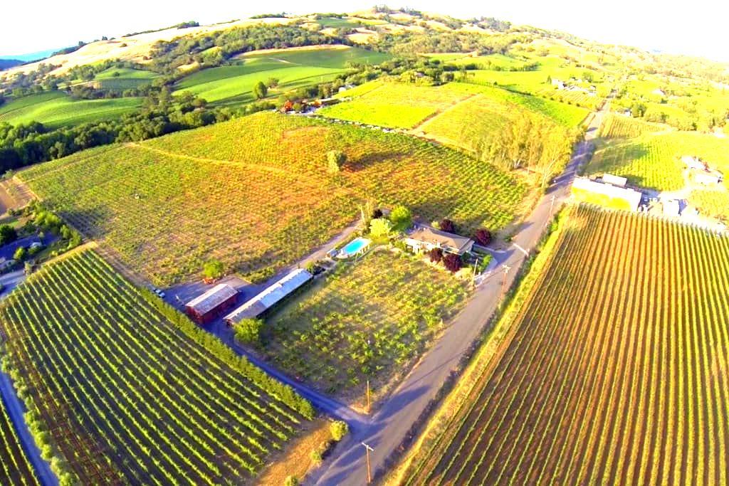 Chix Villa- on 108 yr old vineyard - Healdsburg - Villa