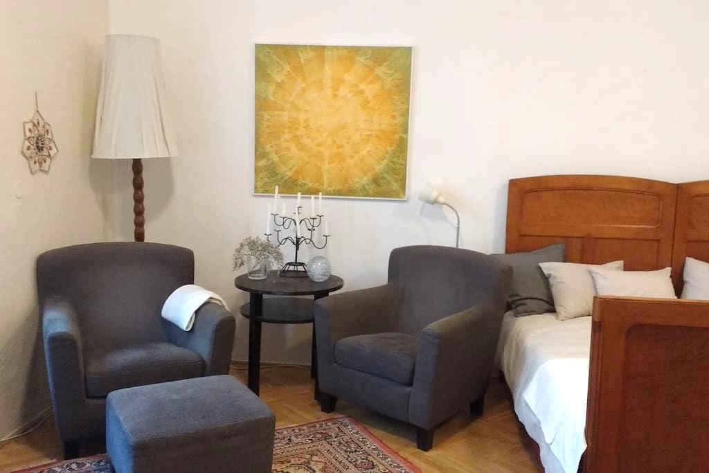 "Spacious Studio Apartment ""At the Three Princes"" - Brno - Byt"