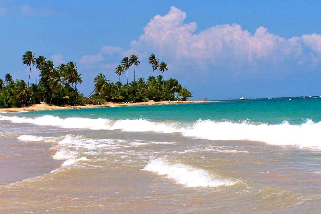 Palmas Del Mar, Beach Front Villa! - Palmas Del Mar - Villa