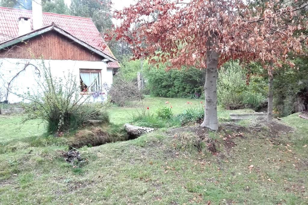 Patagonia, un sitio para disfrutar - Dina Huapi - House