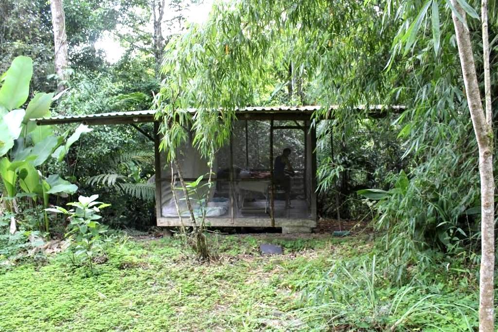 SomerTime Inn- Banana Cabana - Puntarenas Province - Hut