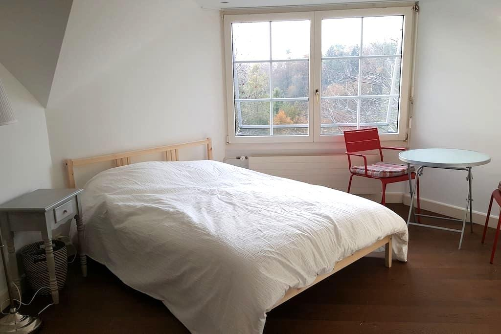 Large bedroom near Lausanne with nice view on lake - Belmont-sur-Lausanne - Дом