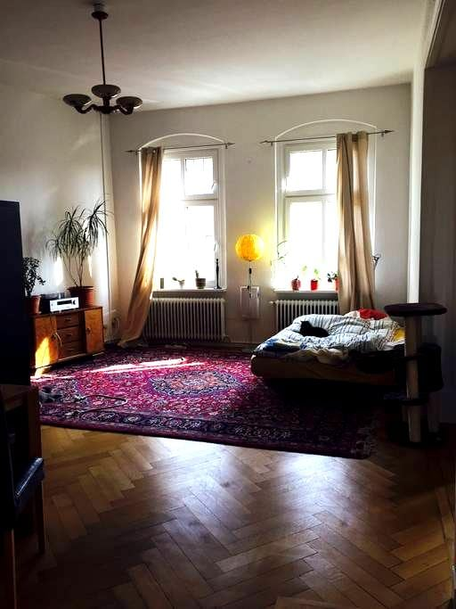 Beautiful Place Towels Coffee Tea & Cats included - Berlin - Appartement en résidence